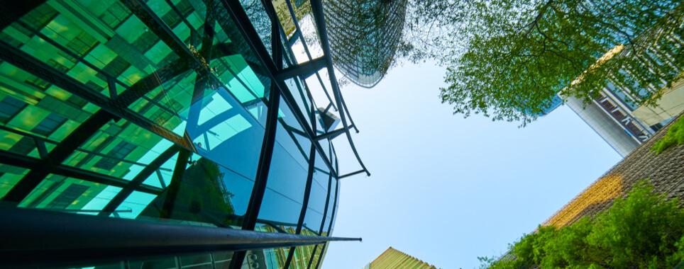 Igiene Ambientale: l'importanza di essere un'azienda green